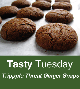 Tasty-Tuesday-ginger-snaps